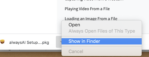 "AI ""show in finder"" button after downloadesd"